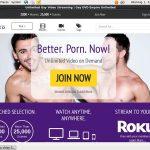 sex Gaydvdempire.com