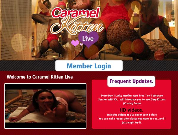 Passwords Caramel Kitten Live