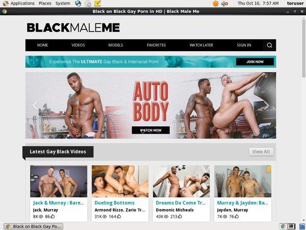 Blackmaleme.com Site Passwords
