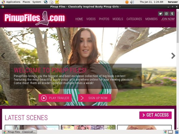 Free Trial For Pinupfiles