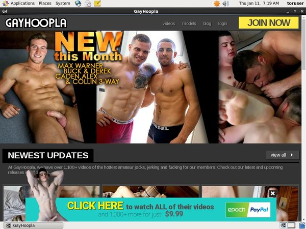 Hoopla Gay Sign Up